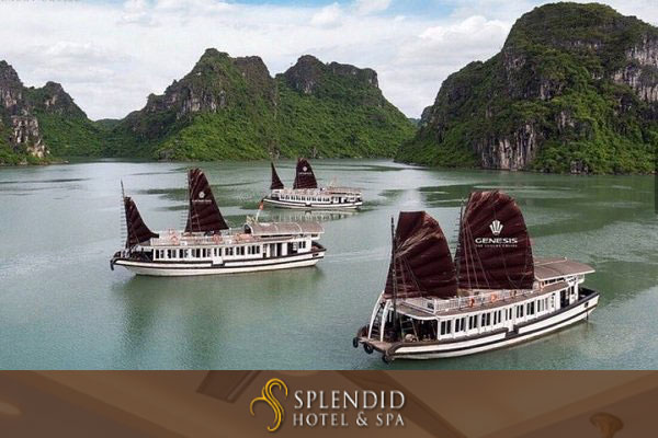 Halong Bay 1 day FIRST CHOICE