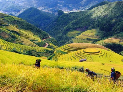 SP2 - SAPA EASY TREKKING TOUR 3D2N (OVERNIGHT IN HOTEL AND HOMESTAY)